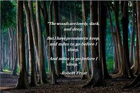 Forest Quotes Mesmerizing The Woods Are LovelyRobert Frost [48x48] QuotesPorn