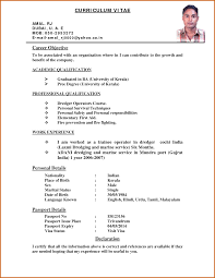 resume cv years experience resume in accounting cv samples curriculum vitae career objective personal details passport