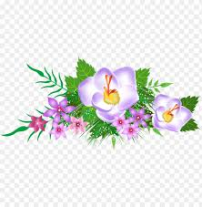 spring flowers clipart png image with