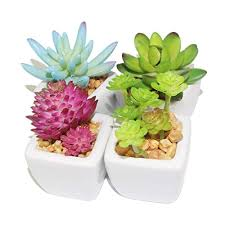Cute office decorations Office Workspace Myartte Home Decor Artificial Shrubsset Of Different Artificial Succulent Plant For Home Decoration Doragoram Cute Office Decorations Amazoncom