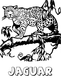 Jaguar Coloring Free Animal Coloring Pages Sheets Jaguar