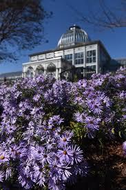 visit lewis ginter botanical garden in