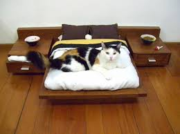 mini bedroom for cat
