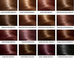 Lace Wigs Hair Colours For Darker Skin Tones