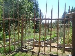 deer proof garden fence. Deer Proof Garden Fencing Ideas And Photos Fence E