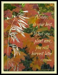 Autumn Quotes Extraordinary Autumn Quotes For Kids Autumn Posters Picture