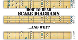 How To Read Guitar Scale Charts How To Read Scale Diagrams And Why Roots Music School