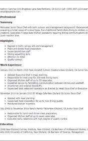 Culinary Resume Template Delectable Culinary Resume Skills Formatted Templates Example