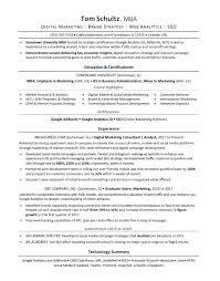 Startup Resume Template Coo Sample Resume Executive Resume Writer