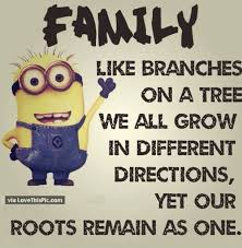 40 Best Family Minion Quotes Delectable Best Family Quotes
