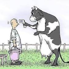 coronavirus :: milk :: farmer :: cow :: geek :: comics (