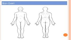 Body Chart Physical Therapy Subjective Examination Amir