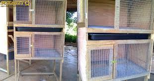 Ukurannya akan lebih kecil jika dibandingkan dinding dari kandang ayam bangkok untuk kandang postal dapat dibuat dari kawat dan juga dibagian dalamnya harus ada alat pemanas yang buasanya. Ukuran Ideal Kandang Ayam Bangkok Tentang Kolam Kandang Ternak Di 2021 Desain Kandang Ayam Kandang Ayam Ayam