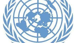 Image result for conselho de segurança das nações unidas