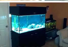 fish tank stand design ideas office aquarium. Simple Easy Aquarium Stand Beautiful Ideas Fish Tank Design Office