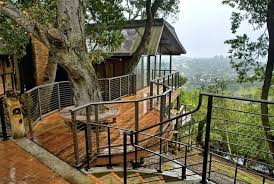 image 8 9 cool design ideas to build pictures tree house designs inside round tree house blueprints designs building jobs uk