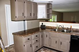image for remarkable painted kitchen cabinets ideas