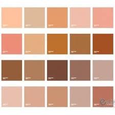 Pantone Skin Tone Guide In 2019 Skin Color Palette