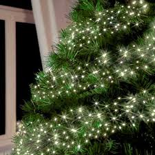 480 Christmas Tree Lights Amos 480 Led 6 2m Cluster Fairy Lights Indoor Outdoor