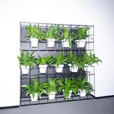 Small Picture horticulture of australia HAL pot plant vertical garden Garden