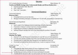 Professional Resume Templates 2015 Free Student Resume Templates High School Student Resume Examples