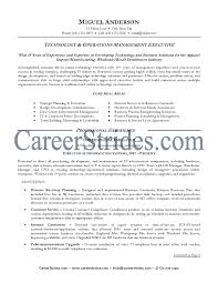 resume examples  information technology resume examples resume        resume examples  information technology resume examples for technology and operations management executive with core skill