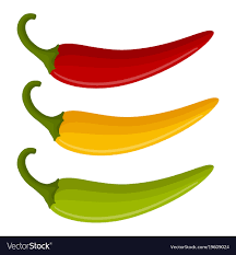 chili peppers vector. Perfect Chili Three Multicolored Chili Peppers Vector Image For Chili Peppers Vector V