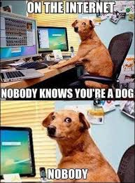 dog tech support. dogs are the best kind of people! check out these 25 funny dog memes that will always make us laugh, no matter what. tech support