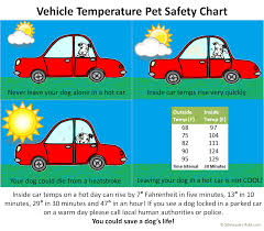 Vehicle Temperature Pet Safety Chart Via Schnauzers Rule Com