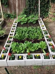 unusual vegetable garden ideas for home