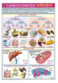 Food And Carbohydrates Chart Carbohydrates For Food Nutrition Chart