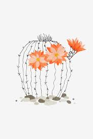 Cactus Embroidery Pattern Amazing Decorating