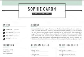 Professional Looking Resume Wonderful Examples Of Resumes Photo