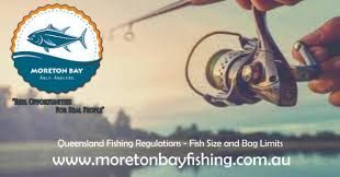 Fishing Archives Page 3 Of 3 Moreton Bay Able Anglers