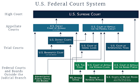 Structure Of The U S Federal Court System In 2019 Circuit