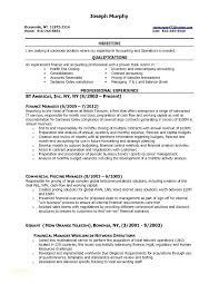 Sample Resume Finance Manager Senior Manager Finance Resume ...