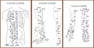 Acupuncture Meridian Chart Free Download Acupuncture Meridian Points With Reference To The Body Map