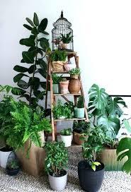 diy indoor vegetable garden indoor garden ladder planter ladder shelf indoor vegetable garden kit diy indoor vertical vegetable garden