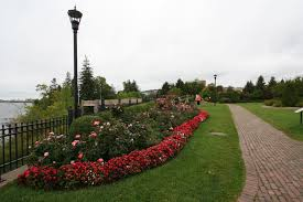 paths throughout the park encourage strolling views of the lake and flowers make your walk pleasant and cool