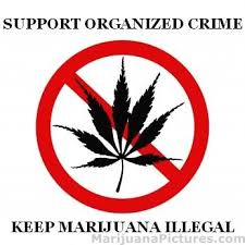 keep marijuana illegal <a href live >we ve selling and using marijuana in public places should be considered illegal one con is that people that are under age will smoke all the time and will be