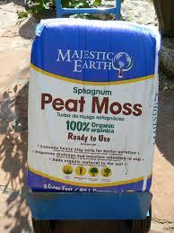 blueberry soil mix. Modren Mix Planting Blueberries W Worm Castings Inside Blueberry Soil Mix B