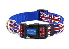Puppy Collar Size Chart Us 1 69 Dog Collar Nylon Adjustable Cross Flag Themed Print Quick Release Walking Training Puppy Collar For Small Medium Large Dogs In Collars From