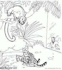 Zoo Animal Coloring Page 28 Kizi Free Coloring Pages For Children