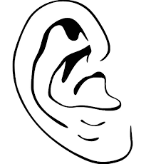 Small Picture Human Ear Coloring Page Coloring Pages Ideas