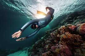 A Guide To Buying Your First Freediving Wetsuit Deeperblue Com