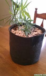 diy fabric grow pots cannabags made from eco felt blogs 420