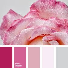 Color Palette #3000