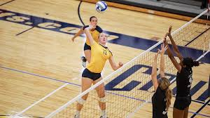 Marist Sweeps Volleyball In MAAC Home Opener - Canisius College Athletics