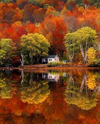 Pin by Lillian Rhodes on idees | Autumn landscape, Autumn scenery,  Landscape photography