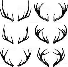 deer antler vector. vector deer antlers collection royalty-free stock art antler n